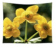 Himalayan Marsh Marigold Tapestry