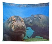 Hippos In Love Tapestry