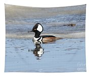 Hodded Merganser With Reflection Tapestry