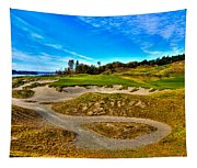 Hole #3 At Chambers Bay Tapestry