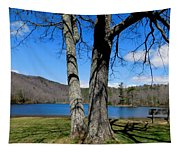 Hometown Series -sherando Lake Tapestry