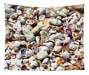 Honeymoon Island Shells Tapestry