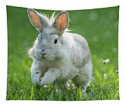 Hopping Rabbit Tapestry