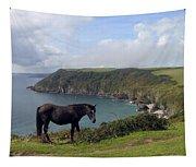Horse Along Coastal Path Cornwall Tapestry