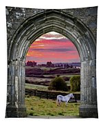 Horse At Sunrise In County Clare Tapestry by James Truett