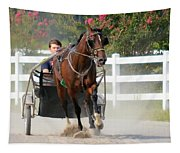 Horse Carriage Racing In Delmarva Tapestry