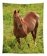 Horse In A Field With Flowers Tapestry