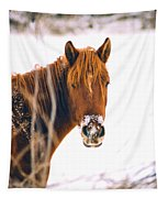 Horse In Winter Tapestry
