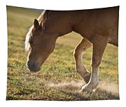 Horse Pawing In Pasture Tapestry