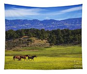 Horse Play Tapestry