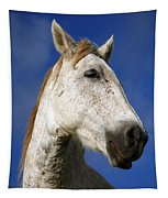 Horse Portrait Tapestry