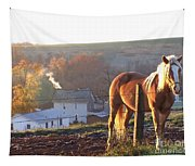 Horses In Autumn Frosty Sunrise Tapestry