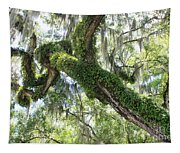 Host Tree Tapestry