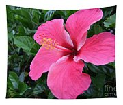 Hot Pink Hibiscus 1 Tapestry