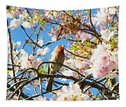 House Finch In The Cherry Blossoms Tapestry