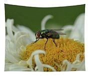 Housefly On Daisy Tapestry