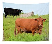 How Now Brown Cow Tapestry