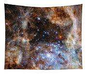 Hubble Finds Massive Stars Tapestry