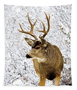 Huge Buck Deer In The Snowy Woods Tapestry