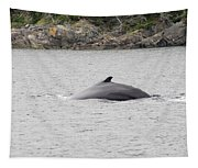 Humpback Whale 5 Tapestry