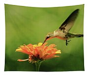 Hummer And Zinnia Tapestry