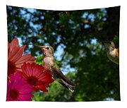 Hummers And Colored Daisies Tapestry
