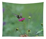 Humming Bird On A Cosmo Tapestry