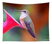 Hummingbird - 18 Tapestry