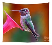 Hummingbird - 28 Tapestry