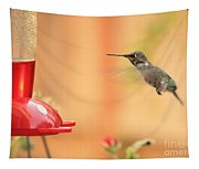 Hummingbird And Feeder Tapestry