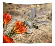 Hummingbird And The Hedgehog  Tapestry