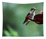 Hummingbird At Rest Tapestry