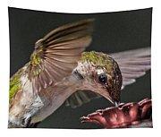Hummingbird. Tapestry