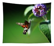 Hummingbird Hawk Moth - Five Tapestry