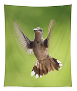 Hummingbird Hello There Tapestry