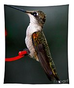 Hummingbird In Profile Tapestry