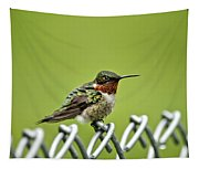 Hummingbird On A Fence Tapestry