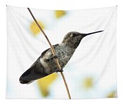 Hummingbird On Tightrope Tapestry