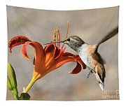 Hummingbird Whisper  Tapestry