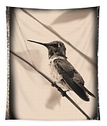Hummingbird With Old-fashioned Frame 3 Tapestry