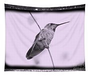 Hummingbird With Old-fashioned Frame 4 Tapestry