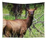Hungry Elk Tapestry