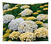 Hydrangeas Blooming Tapestry