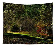 Hylebos In Autumn Tapestry