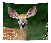 I Am All Ears Tapestry