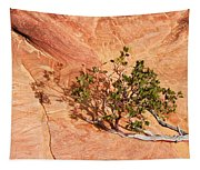 I Am The Vine Tapestry