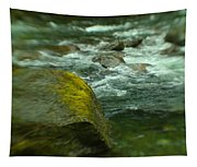 I Dreamed Of The River Tapestry