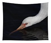 Ibis Drinking Tapestry