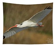 Ibis Glide Tapestry