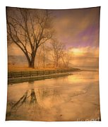 Ice And Light Tapestry